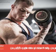 متامورفیسم بدن برنامه ۱۲ هفته ای عضله سازی و دگرگونی بدن
