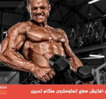 ۶ راه برای افزایش سطح تستوسترون هنگام تمرین