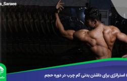رضا سرایی