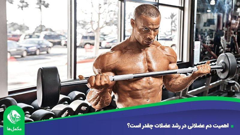 اهمیت دم عضلانی در رشد عضلات چقدر است؟