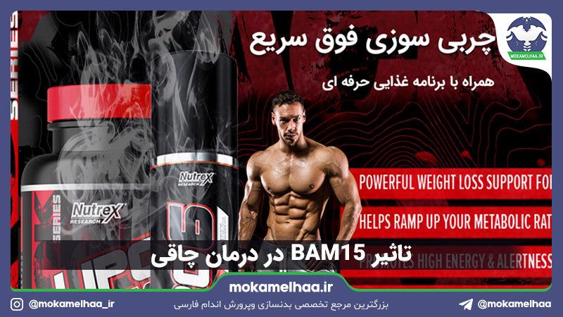 BAM15 در درمان چاقی