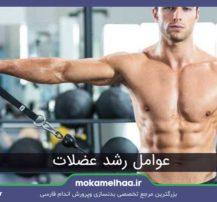 عوامل رشد عضلات