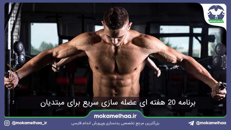 برنامه عضله سازی مبتدی