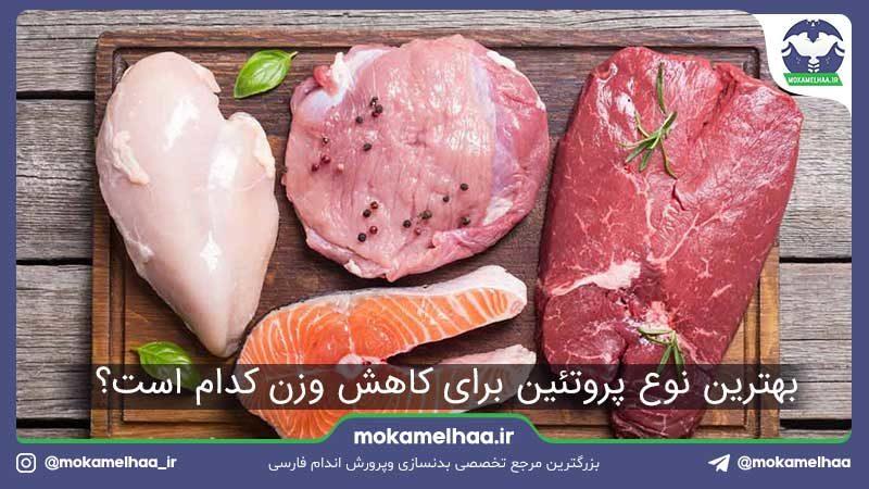 بهترین پروتئین کاهش وزن