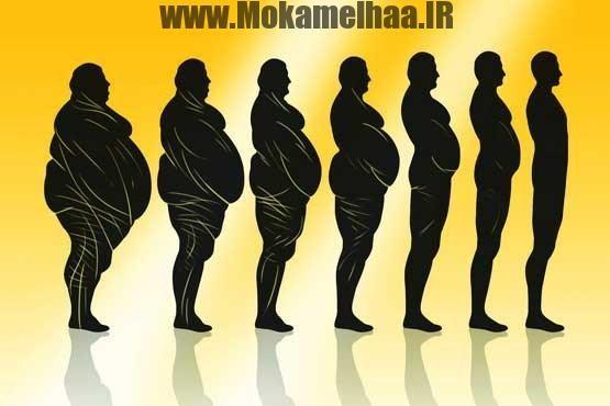 افزایش وزن فوری