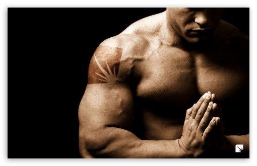 bodybuilding-t2