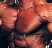 بدنسازی, بدن سازی, مکملها, سینه, تمرینات سینه, افزایش حجم عضلات سینه, نحوه رشد عضلات سینه, رشد عضلات بالا سینه, بهترین حرکات سینه, بهترین برنامه تمرینی سینه, سینههای زیبا
