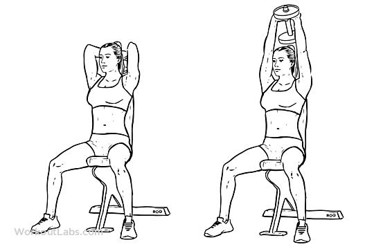 کاملترین و جامع ترین راهنمای بدن سازی بانوان (بخش دوم)