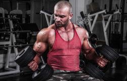 steroids800