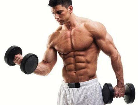 bodybuilding-training-program1