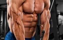 triceps-1