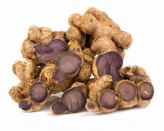 Black galingale root, thai herb and folk medicine in Thailand